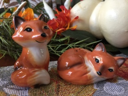 Foxy Salt and Pepper
